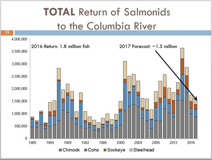 2017 Fish Forecast: Total return of Salmonids to the Columbia River