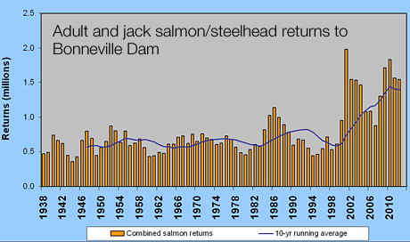 Graphic: Number of Salmon and Steelhead adults climbing over Bonneville Dam from 1938 throught 2012.