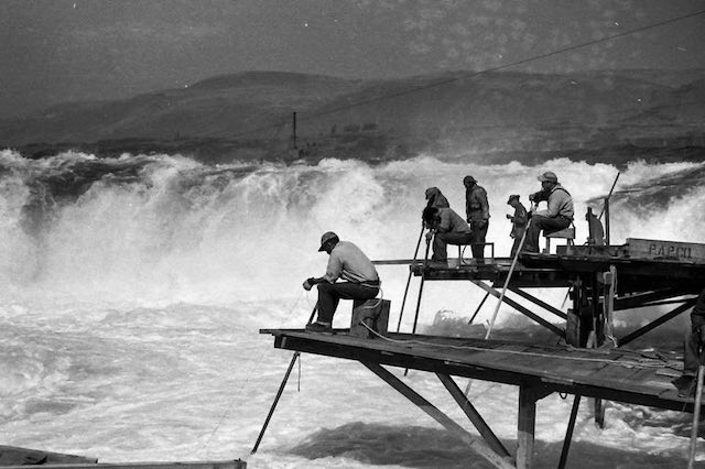Indian fishermen dipnetting salmon at Celilo Falls on the Columbia in 1952. The falls, a major fishing site for tribes across the Pacific Northwest, was submerged when The Dalles Dam was built in 1957. (Barney Brunelle photo, Courtesy of Beverly Wright Brunelle)