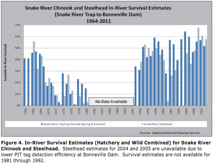 Graphic: Survival rates of juvenile Chinook and Steelhead migrating downstream through the federal hydrosystem corridor.  Note that in most years, fewer than half the juvenile run has survived the dangerous downstream migration.