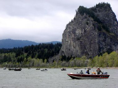 A small boat load of young anglers display their catch of Chinook salmon.