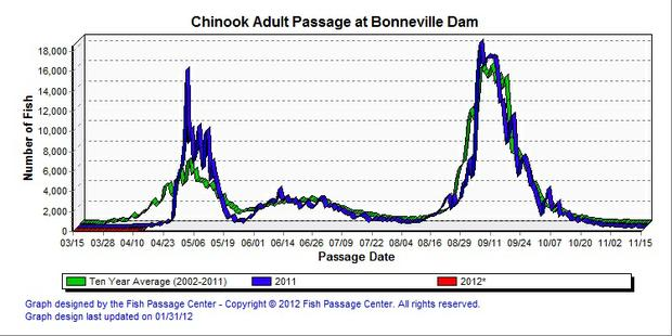 Bonneville Dam spring chinook salmon counts and historical data showing the 2012 run is late.
