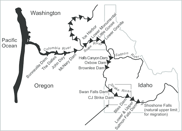 Map: Columbia and Snake River dams (click for a map of Columbia River Basin).