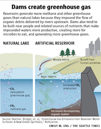 (Graphic by Emily M Eng) Reservoirs create more methane and other greenhouse gases than natural lakes.