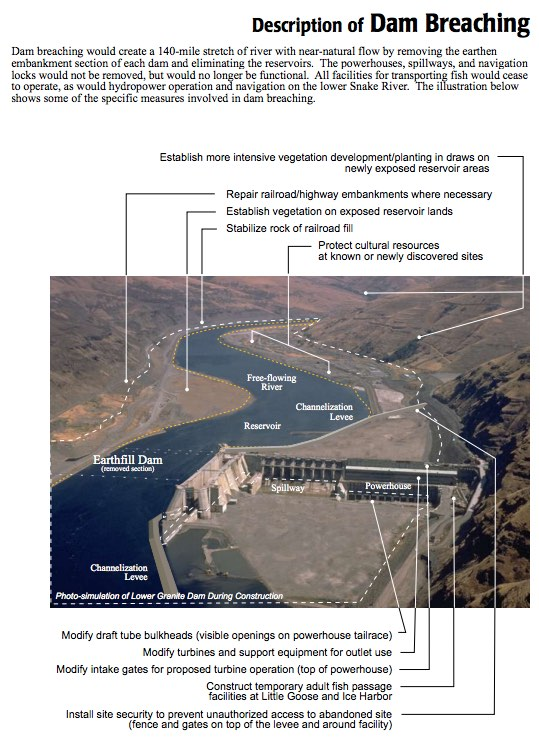 Planning for LSR dam breaching -  Summary: Lower Snake River Feasibility Study / Environmental Impact Statement (February 2002)