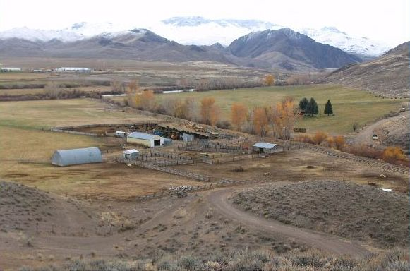 Conservation easement preserves historic Ellis Ranch on Salmon River near Challis, Idaho.