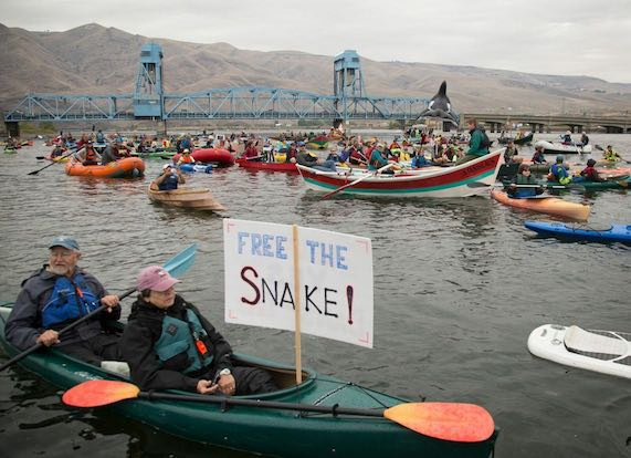 Free the Snake boaters protest Snake River Dams on the river near Clarkston, Washington, on Sept. 17, 2016. (Chris Jordan-Bloch / Free the Snake Flotilla)
