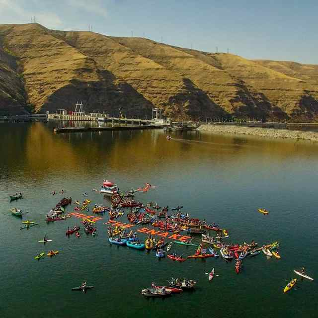 More than 160 boats and 300 advocates staged a peaceful protest, dubbed 'Free the Snake,' between Wawawai Landing and Lower Granite Dam on Oct. 3, 2015, calling for breaching the lower four Snake River dams primarily for the benefit of endangered salmon and steelhead fisheries. (Photo by Ben Moon)