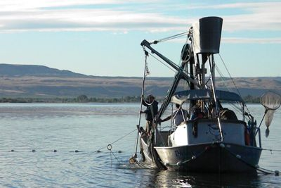 (Michelle Campobasso, Colville Tribes photo) Purse Seine fishing boat equipped with Selective Fishing gear