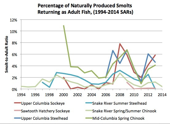 Graphic: Percentage of Naturally Produced Smolts Returning as Adult Fish 1994-2014, (Chinook, Steelhead and Sockeye Salmon)