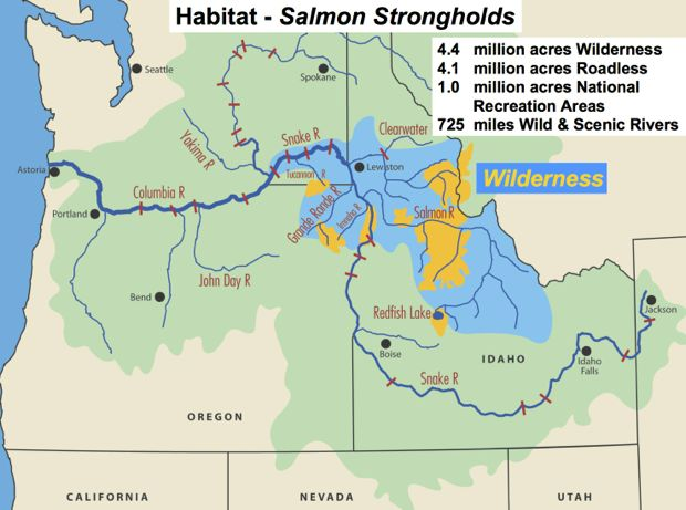 Map: Salmon strongholds in the Pacific Northwest are primarily in the state of Idaho and its expansive wilderness areas.