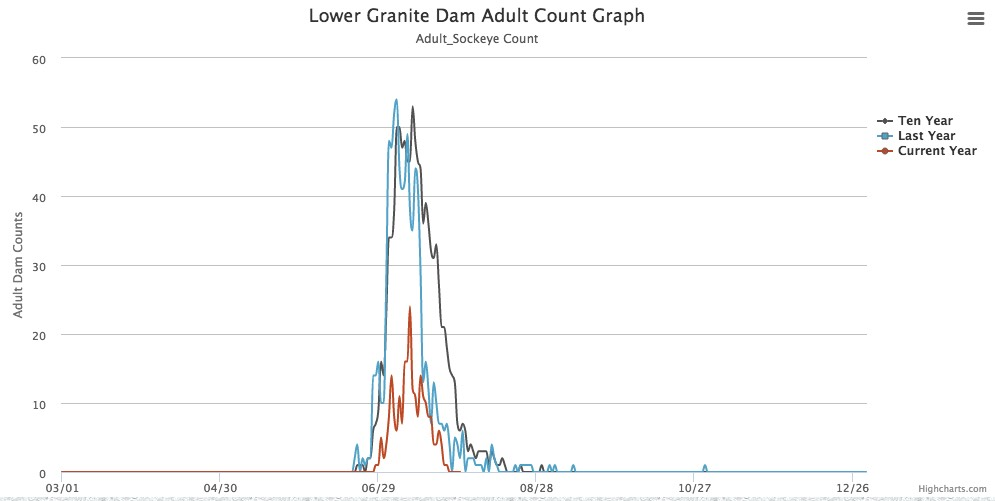 Graphic: Sockeye Salmon run at Lower Granite Dam 2017 well below 10-year average.