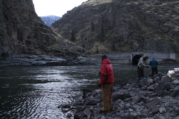 Just downstream from Hells Canyon Dam, steelhead anglers fish the Snake River in November 2014.
