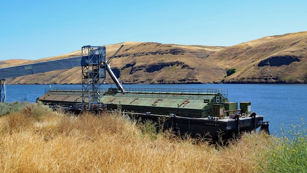 Tidewater barge loading grain on the Lower Snake River.