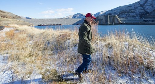 Tom Kammerzell, a port of Whitman County commissioner and owner of Maple K Farms near Colfax, walks along the Snake River near Lower Granite Dam, which, he proudly notes, is equipped with 'world-class, state-of-the-art' fish passage equipment, unlike major dams on the Columbia River. Kammerzell raises Highland cattle on a family farm in the Palouse.