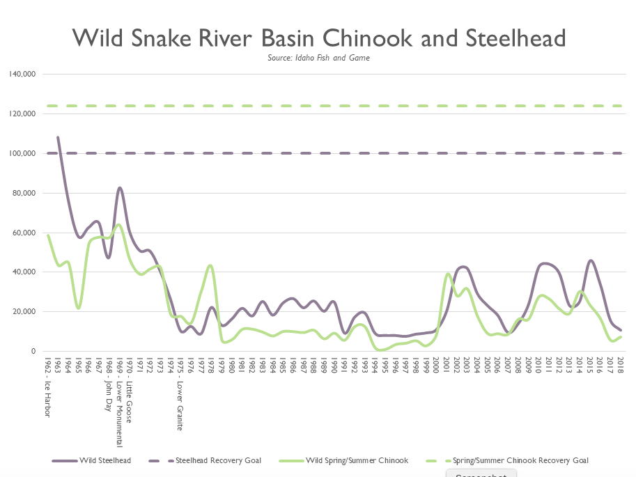 Graphic: Numbers show the crash of salmon and steelhead numbers after the four dams on the lower Snake River were installed.