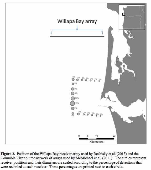 Map Graphic: Detections of migrating salmon at two detection arrays: Willapa Bay and Columbia River plume.