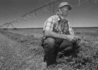 Idaho farmer Mike Larson kneels next to a crop of