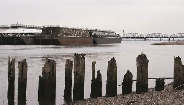 (Mateusz Perkowski) Barges owned by Tidewater Barge Lines are moored on the Columbia River near Hayden Island in Portland, Ore. A federal judge has cited the longshoremen's union for picketing the barges after she had ordered its members to stop.