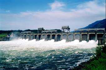 (AP Photo)Columbia River waters flow through spillway of the Bonneville Dam in 1995.