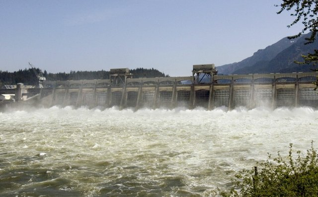 (Don Ryan) Water rushes through spillway gates of Bonneville Dam near Cascade Locks, Ore. Increased spills benefit salmon.