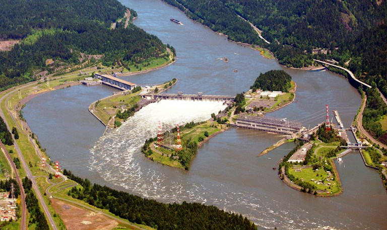 Bonneville dam is the most downstream dam on the Columbia River