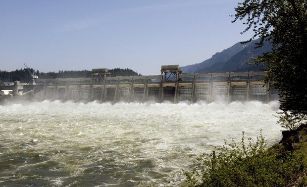 Court-ordered spills -- water flowing over the dams, rather than running it through turbines -- and Mother Nature are the two main factors in this year's big returns of fall chinook and sockeye.