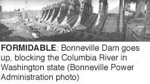 Formidable: Bonneville Dam goes up, blocking the Columbia River in Washington state (BPA photo)