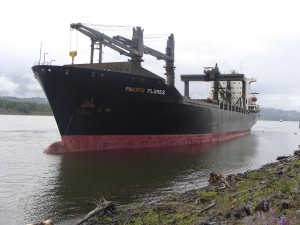(Leslie Slape) Ship aground near Kalama May 23, 2010