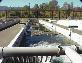 (photo by Dave Fast) Cle Elum salmon supplementation and research facility.