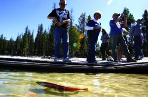 (Megan Thompson) A sockeye salmon darts away from the shore as people watchy Wednesday afternoon during a release of the fish at Redfish Lake near Stanley in the Sawtooth National Forest.