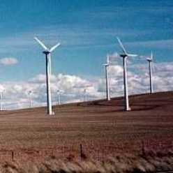 The Condon wind project
