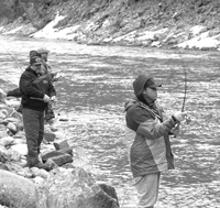 (Mountain Express) Steelhead anglers crowd along the banks of the main stem of the Salmon River near Stanley. Official fish counts conducted by the Army Corps of Engineers suggest Idaho could be in for a good steelhead season this spring.