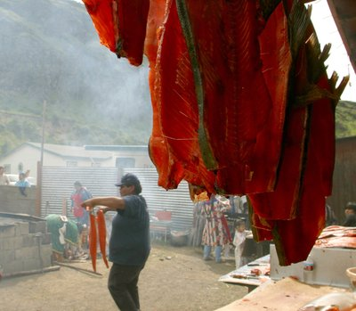 (Mark Harrison and Tom Reese) Traditional tribal drying of fish in the wind.