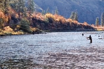 (Keith Ridler) Anglers on the Grande Ronde River could see more steelhead returning in the fall if an Oregon Department of Fish and Wildlife experiment is successful.