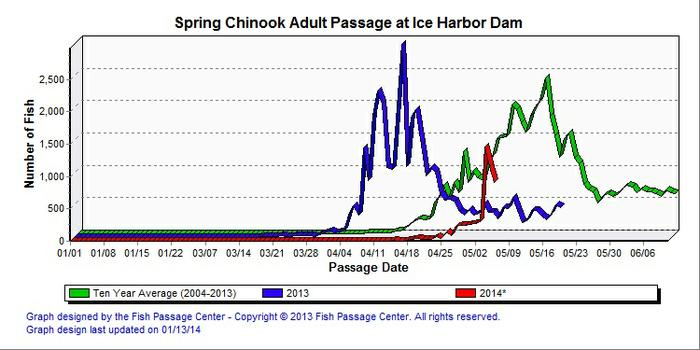Ice Harbor is the first Snake River dam salmon hit on their upstream migration. (Graph: Fish Passage Center)