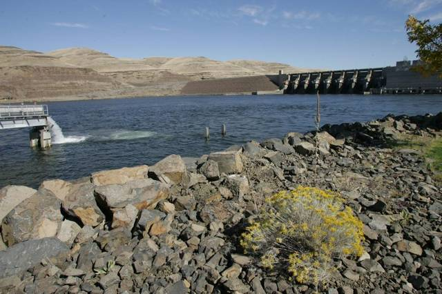 Little Goose Dam on the Snake River. (Molly Van Wagner photo)