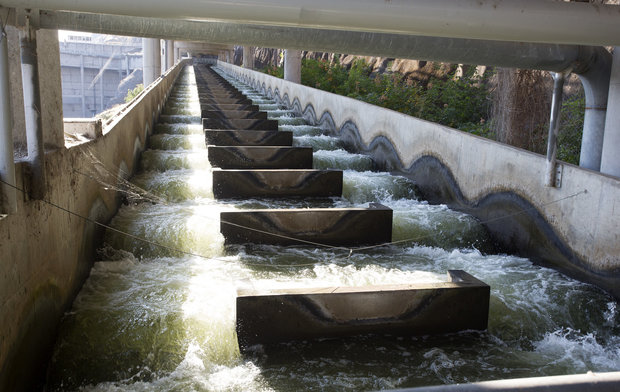 In this file photo taken Sept. 24, 2014, water flows through a fish ladder at Lower Granite Dam on the Snake River in Washington state. There is a renewed push to remove Lower Granite and three other dams on the Snake River to save wild salmon runs. (Dean Hare/The Moscow-Pullman Daily News via AP, File)