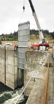 (Dave Olson) Workers using a crane install a temporary steel grate measuring 12 feet wide by 37 feet tall at the opening of one of 12 fish ladders at the foot of Bonneville Dam.