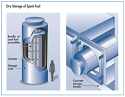Graphic: Dry Storage of spent nuclear fuel