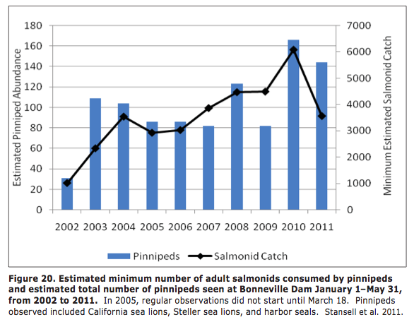 Estimated minimum number of adult salmonids consumed by pinnipeds and estimated total number of pinnipeds seen at Bonneville Dam from 2002 to 2011.