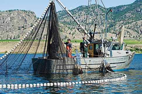 Fishermen aboard the Marion Michelle on Osoyoos Lake set out their nets for sockeye salmon (Photo: Bruce Kemp)