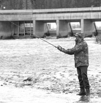 (Mtn Express photo) An angler fishes for steelhead below the weir at the Sawtooth Fish Hatchery on the Salmon River. Next month, the Idaho Fish and Game Commission will consider a limited season for Chinook salmon on the same waters on the upper Salmon. The last time anglers could fish for Chinook in the Sawtooth Valley was in 1977.
