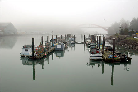 (Grant M. Haller) Swinomish Tribe fishing boats sit at the reservation dock on a foggy morning. Most have been converted for winter crab fishing, their gillnets in storage.