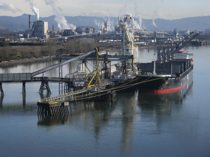 The Columbia River near Longview has been the location of petroleum spills. In all, regulators have found 92 separate toxins in fish taken from the river.