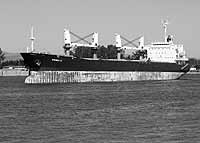 Wheat cargo ship